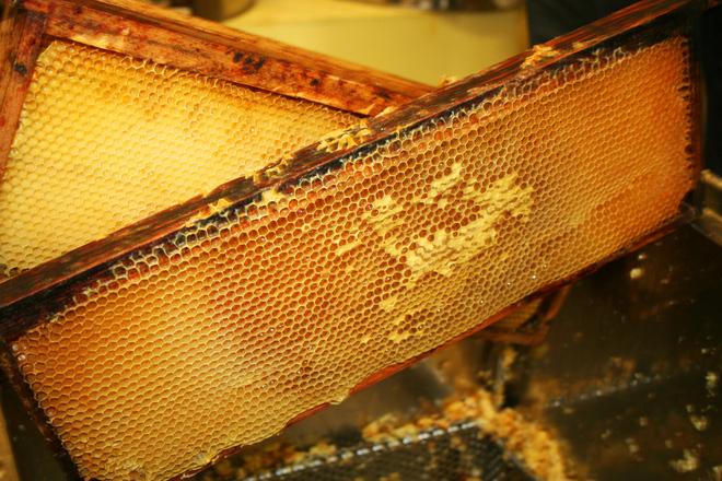 Sokan szeretik a méhpempőt